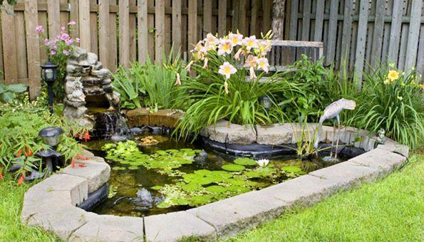 Algen Im Teich Unwillkommene Gaste Auf Naturlichem Weg Bekampfen Indoor Wassergarten Teich Anlegen Gartenteich