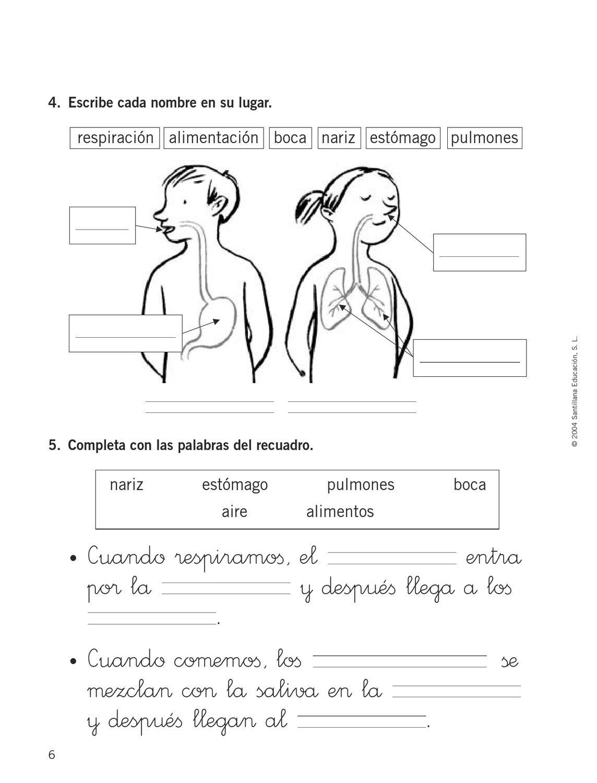 Control Y Evaluación Conocimiento Del Medio Examenes De Primaria Ciencias Sociales Primaria Practicas Del Lenguaje