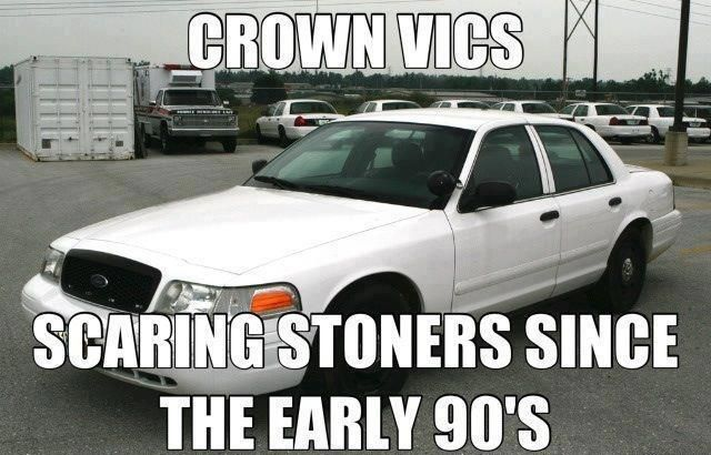 Should say stoners and speeders...