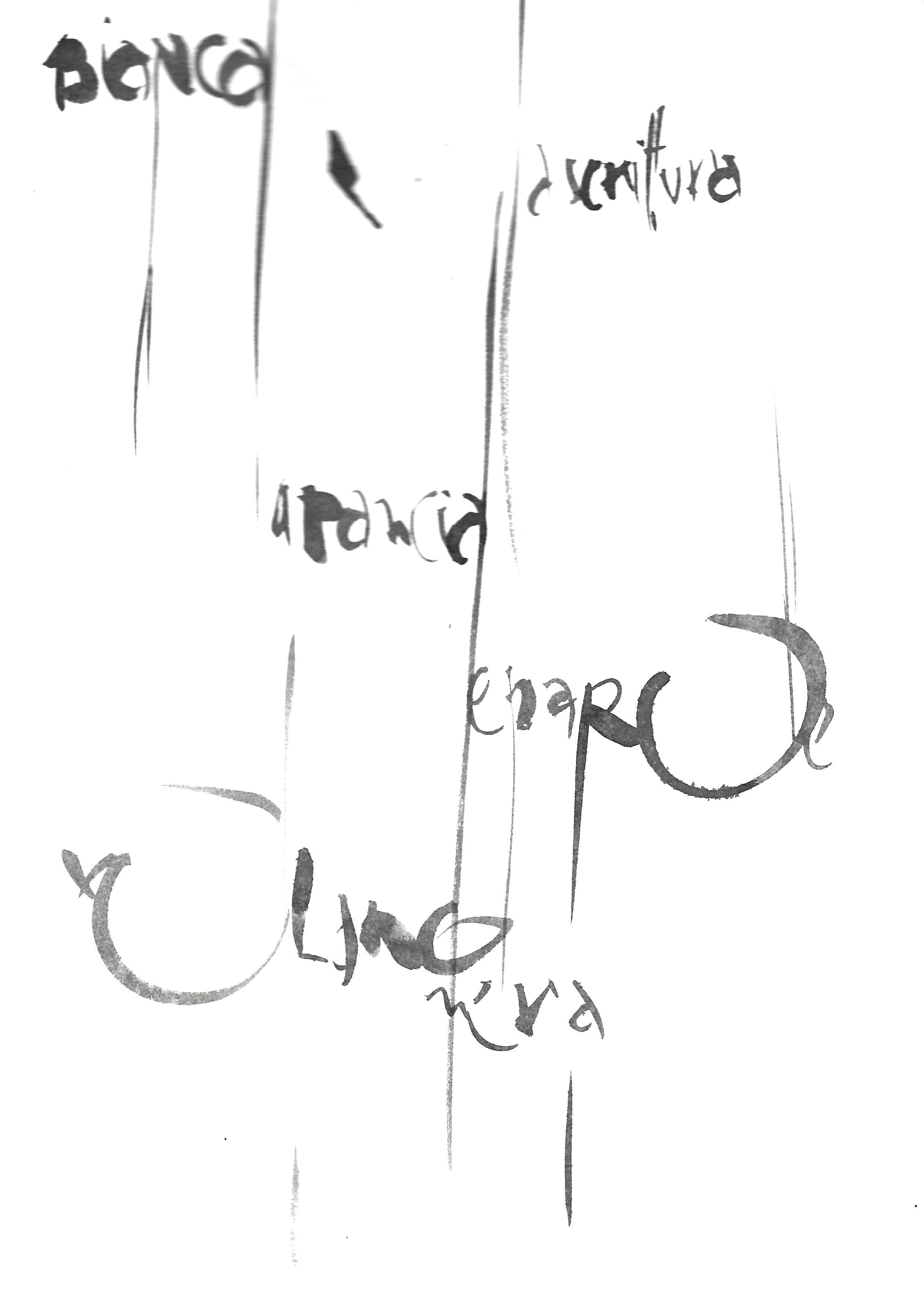 bianca la pagina nera la scrittura©paola rezzonico