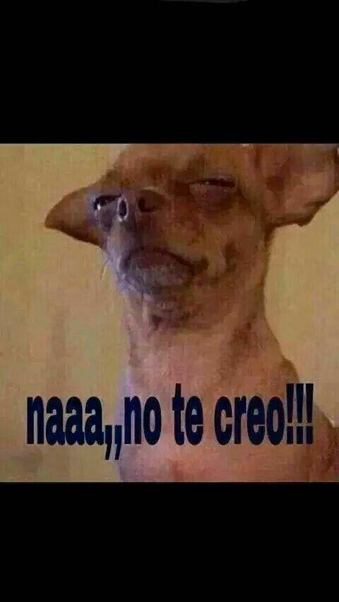 Para Wasap Memes Mexicanos Divertidos Memes Espanol Graciosos Memes Sarcasticos