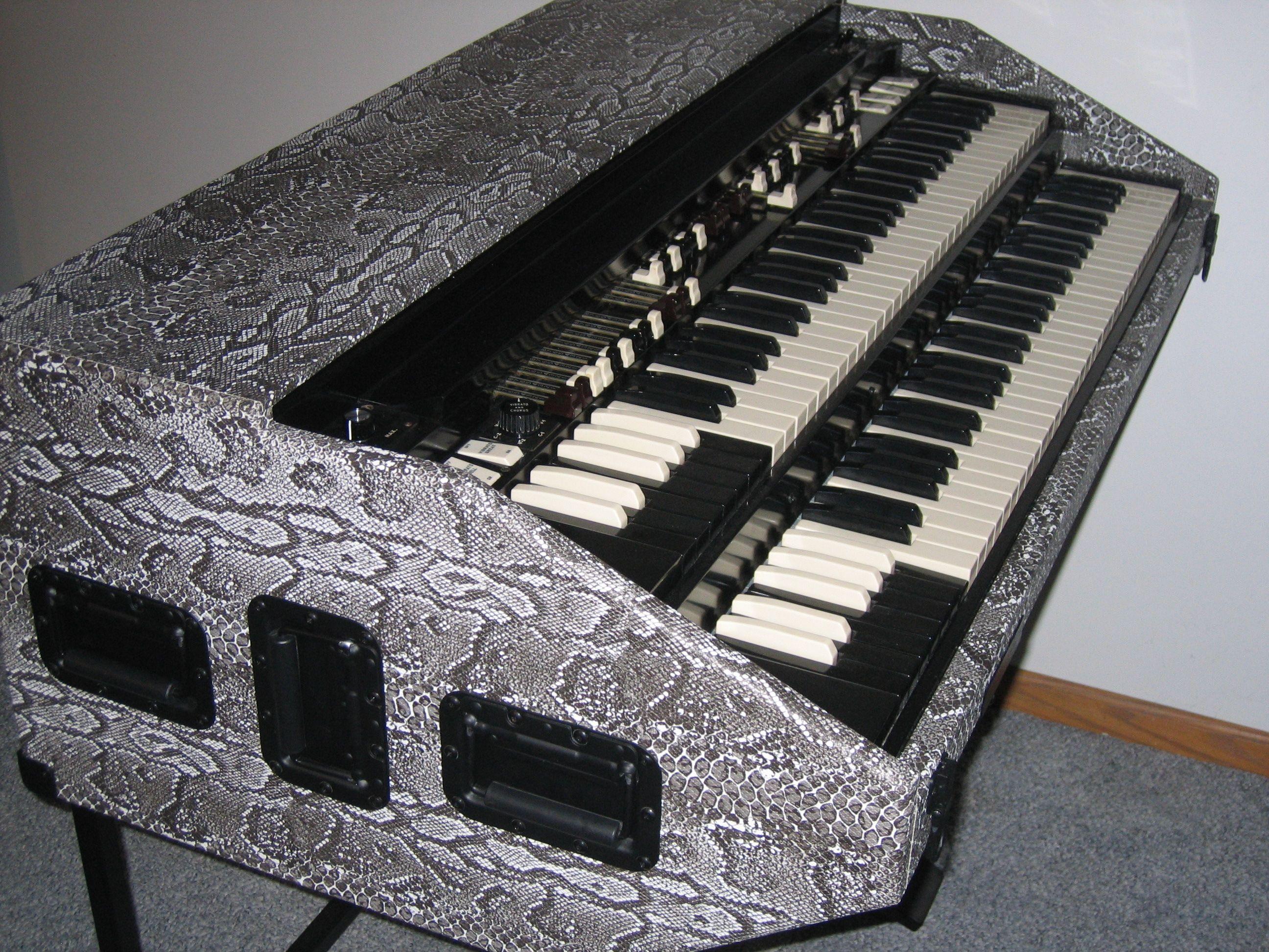 snake skin northern chop hammond organ portable by bb organ music em 2019. Black Bedroom Furniture Sets. Home Design Ideas
