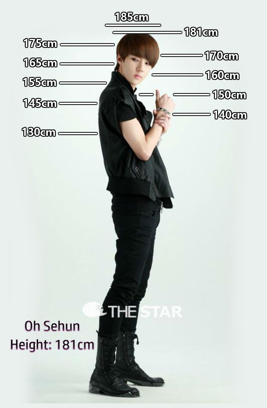 Height Chart   Sehun   Kpop   Pinterest   Height chart  Sehun and Chart Height Chart   Sehun