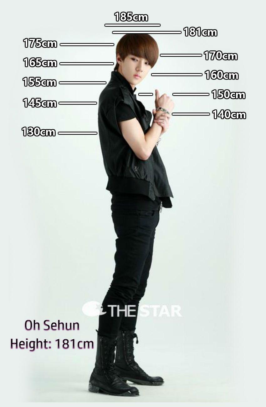 Height chart sehun also exo members rh pinterest
