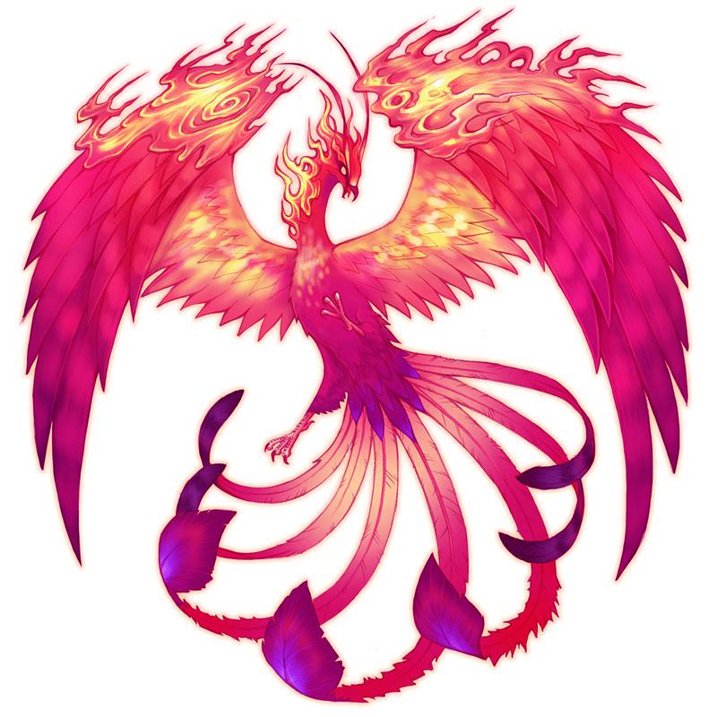 Pink Phoenix Google Search Phoenix Bird Art Phoenix Images Phoenix Artwork
