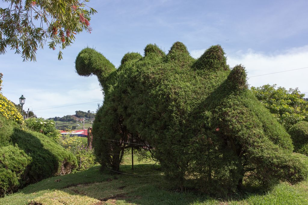 Image result for Parque Francisco Alvarado   Tropical Islands ...
