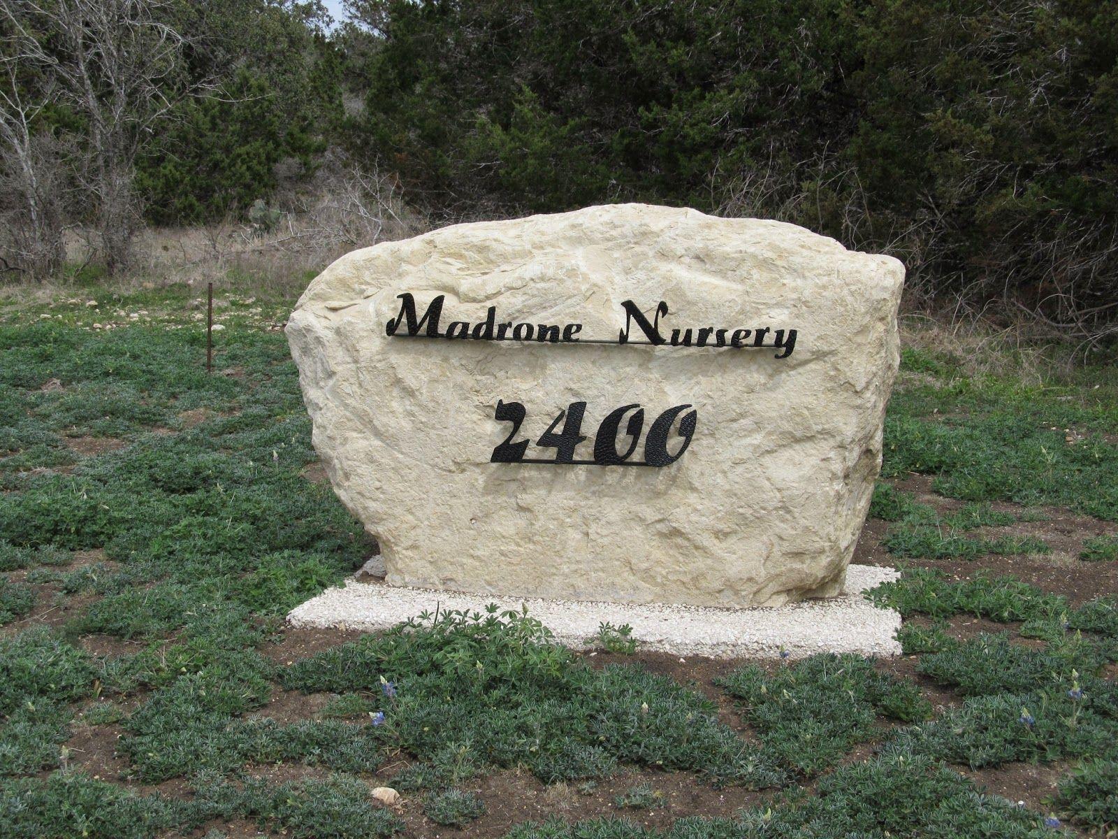 Texas Native Plant Week Madrone Nursery Texas native