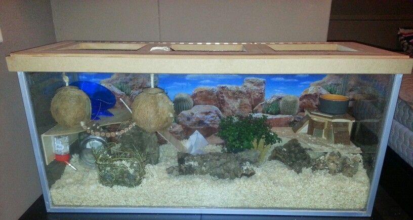 Hamster cage habitat aquarium terrarium 100x36x45 for Fish tank for hamster