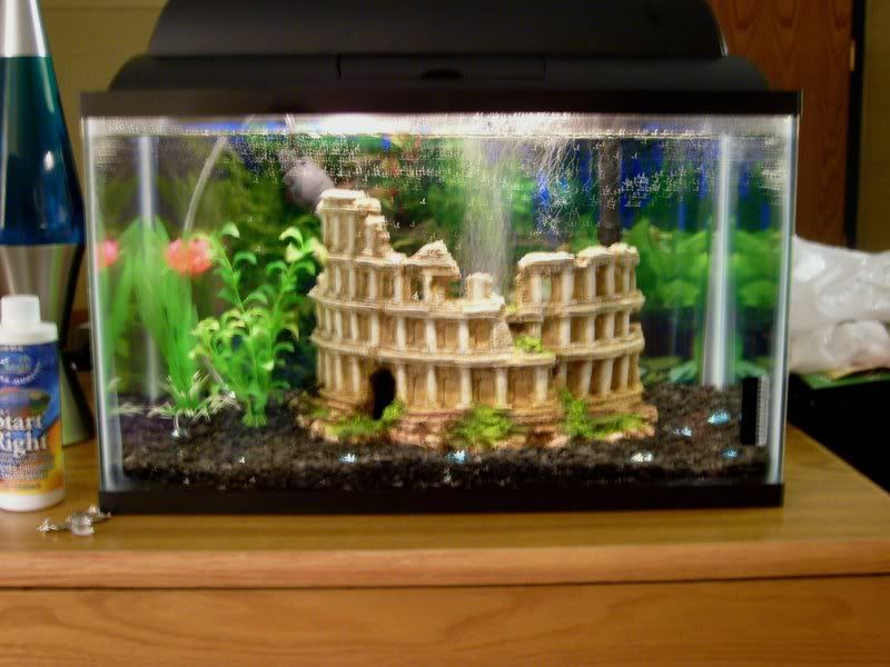 Atlantis Theme Decorations Go Back Gallery For Atlantis Fish Tank Themes Fish Tank Fish Tank Themes Cool Fish Tanks