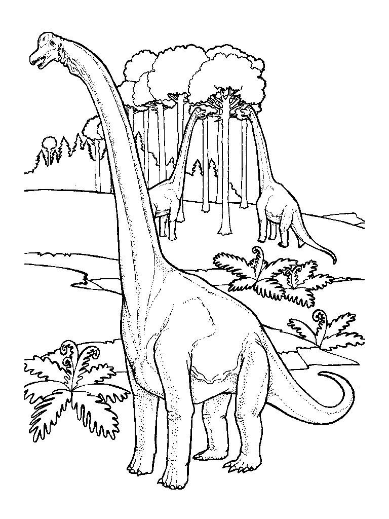 Kolorowanki Image By T L Kolorowanki Kolorowanka Dinozaury