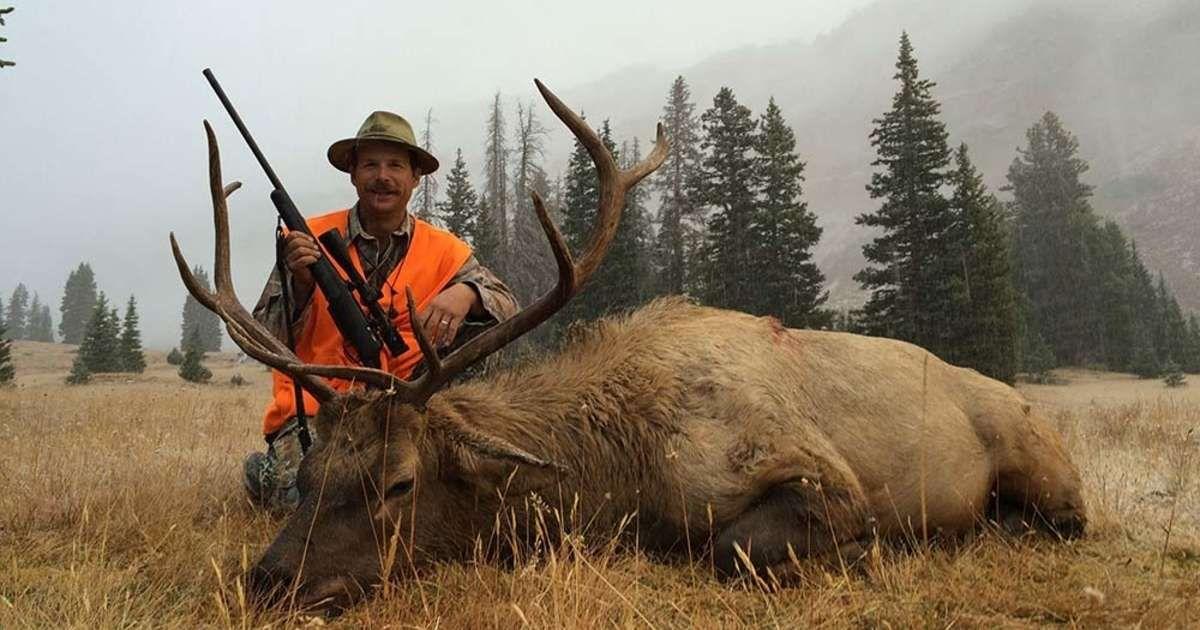 how to hunt coyotes in utah