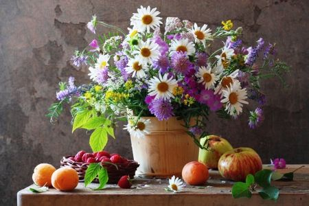 Daisies Wild Flowers And Fruits Flowers Wallpaper Id 1581651