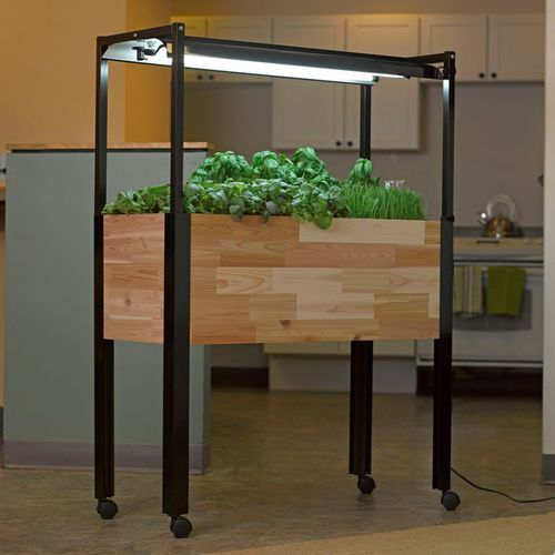 The First Year-round Indoor-outdoor Elevated Raised Bed