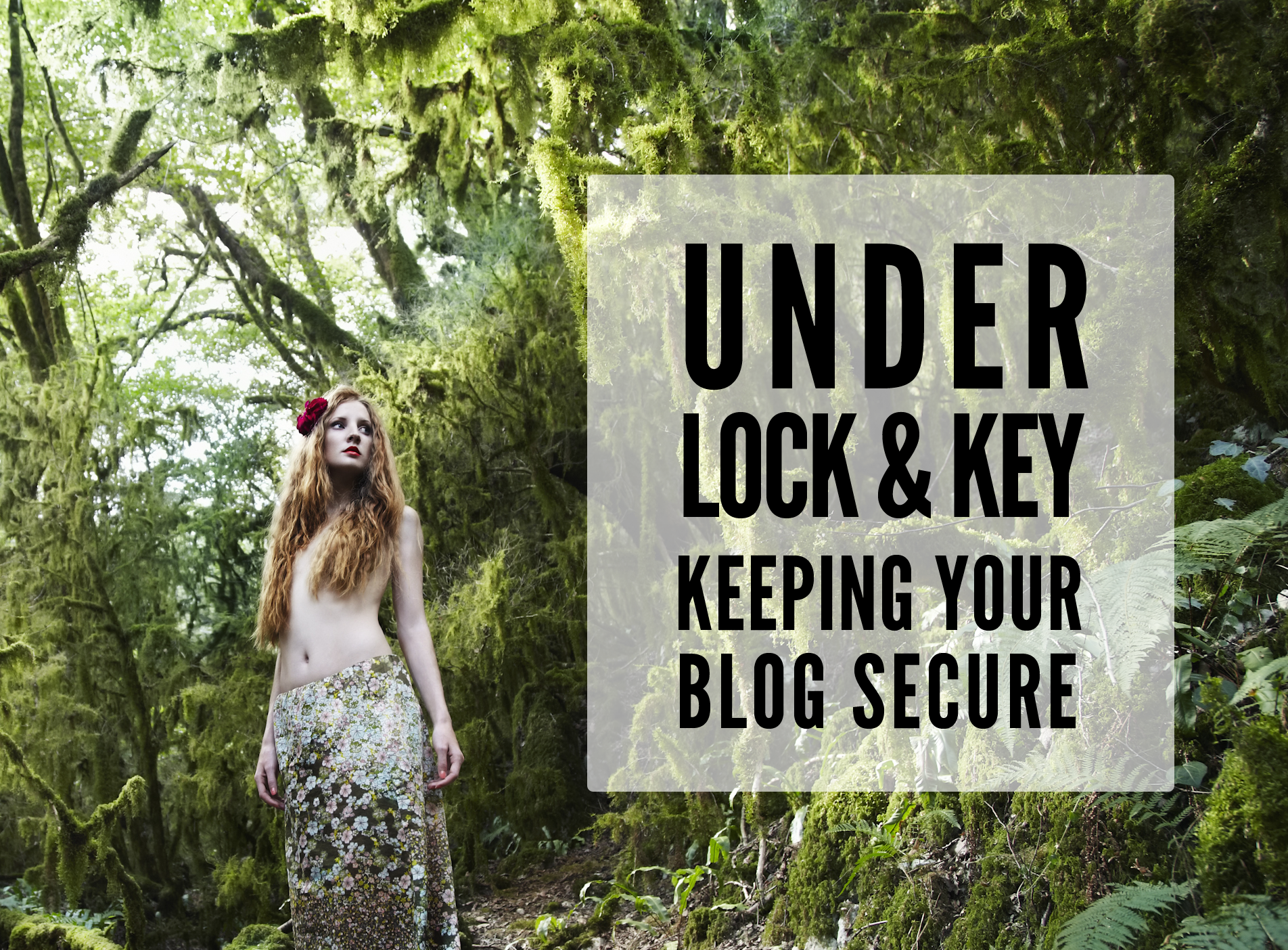 secure your blogs!!!!
