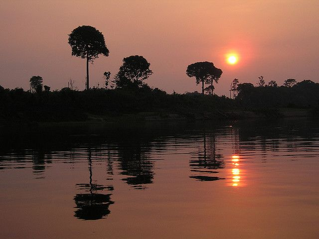 Amazon, Brasil #reis #reizen #trip #brazilië #brasil #travel #brazil