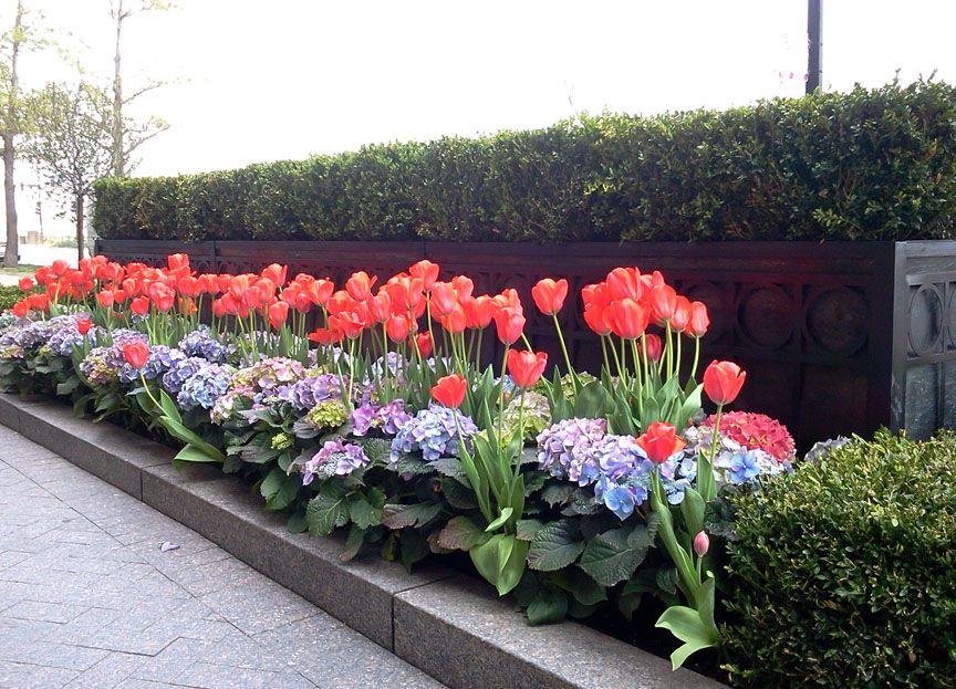 Seasonal Rotation Spring Spring Garden Decor Spring Garden Flower Beds