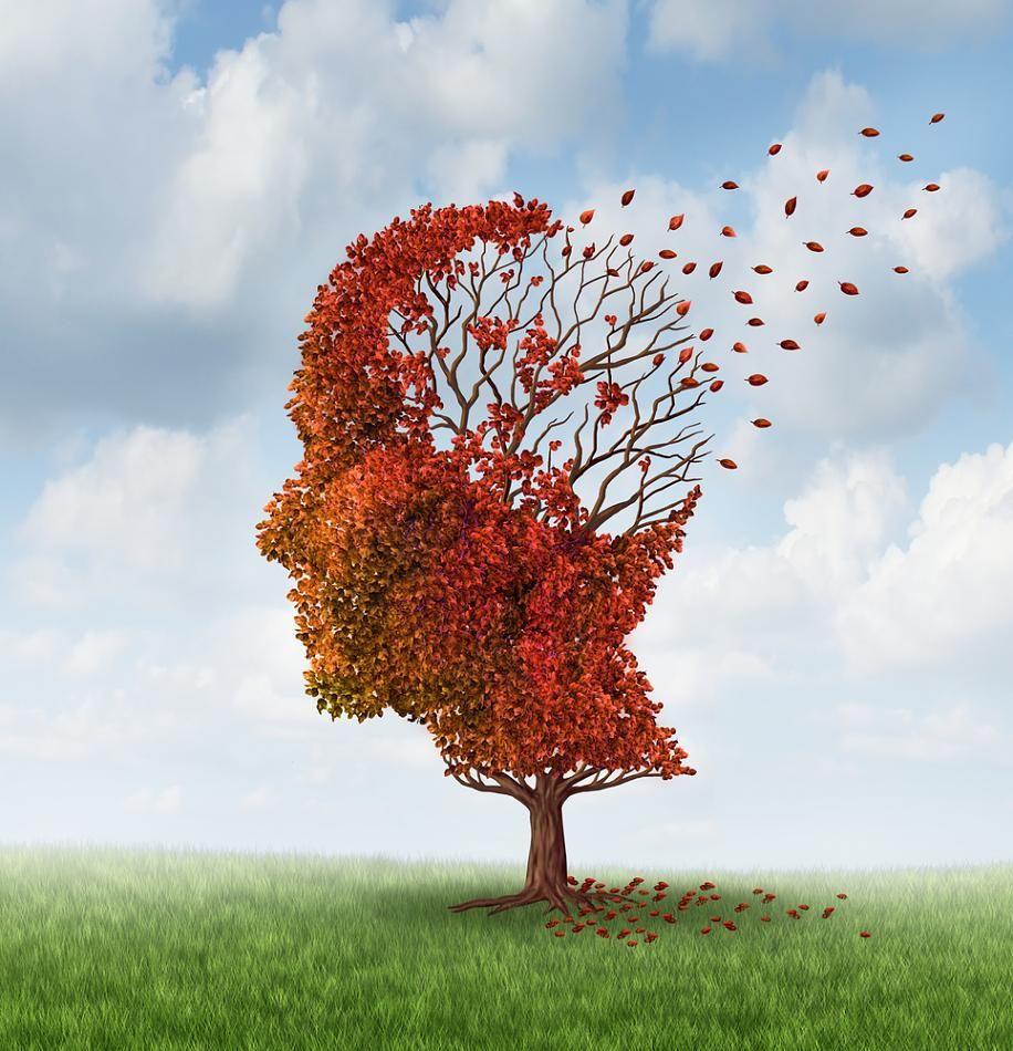 Auch wenn Alzheimer sich zweifelsfrei erst nach dem Tod diagnostizieren lässt, gibt es einige Warnsymptome, die den Hirnverfall ankündigen. Erfahren Sie hier, wann Vergesslichkeit noch normal ist und welche unerwarteten Warnzeichen es gibt.