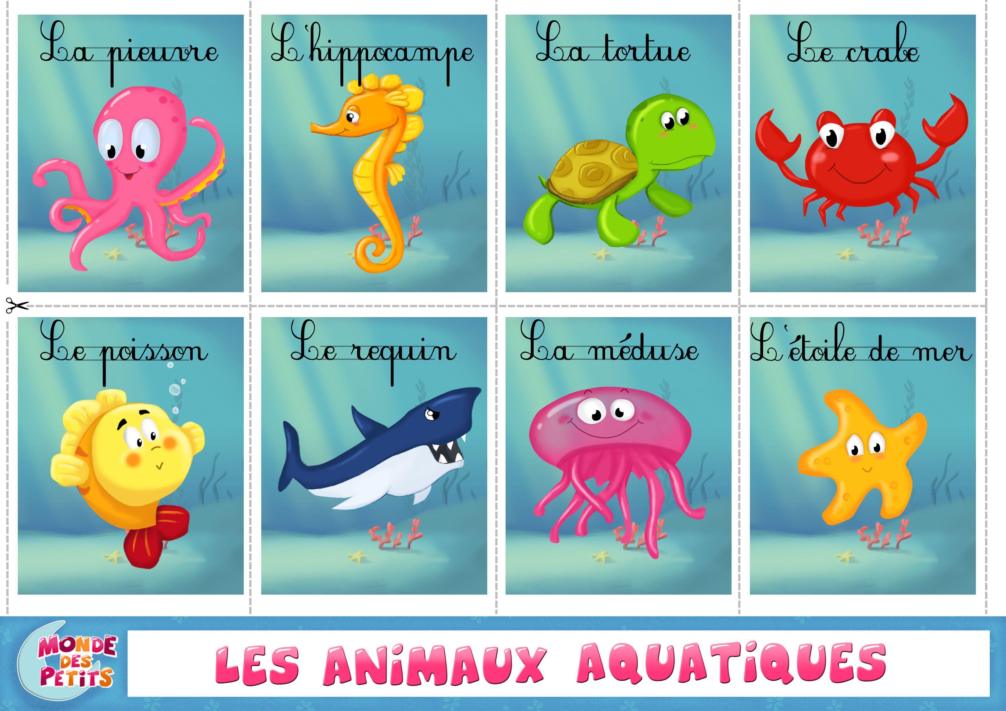 Luxe Dessin A Imprimer Animaux De La Mer
