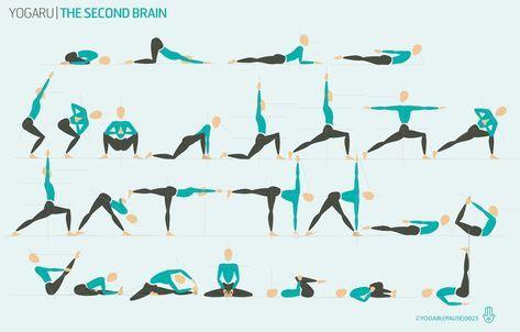 the second brain  hatha yoga sequence yoga sequences