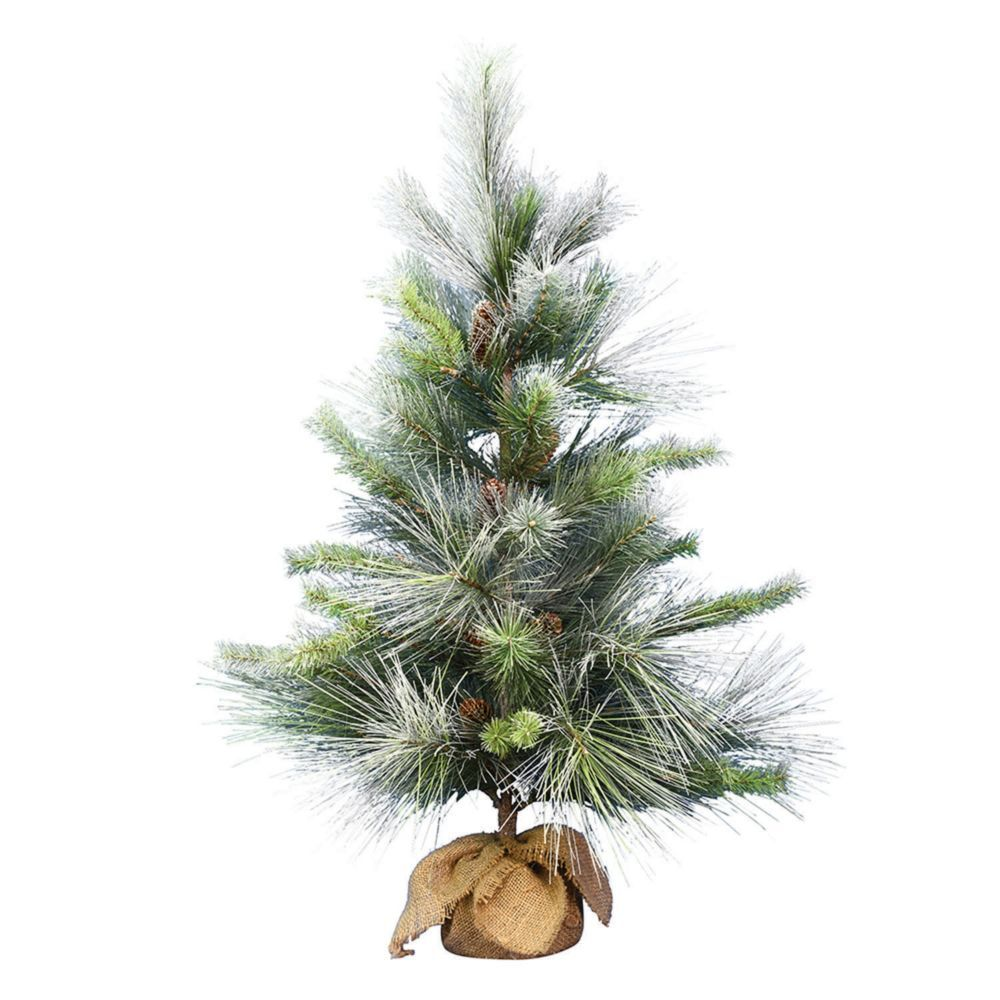"Frosted Slim Christmas Tree: Vickerman 36"" Frosted Myers Pine Tree Burlap Base"