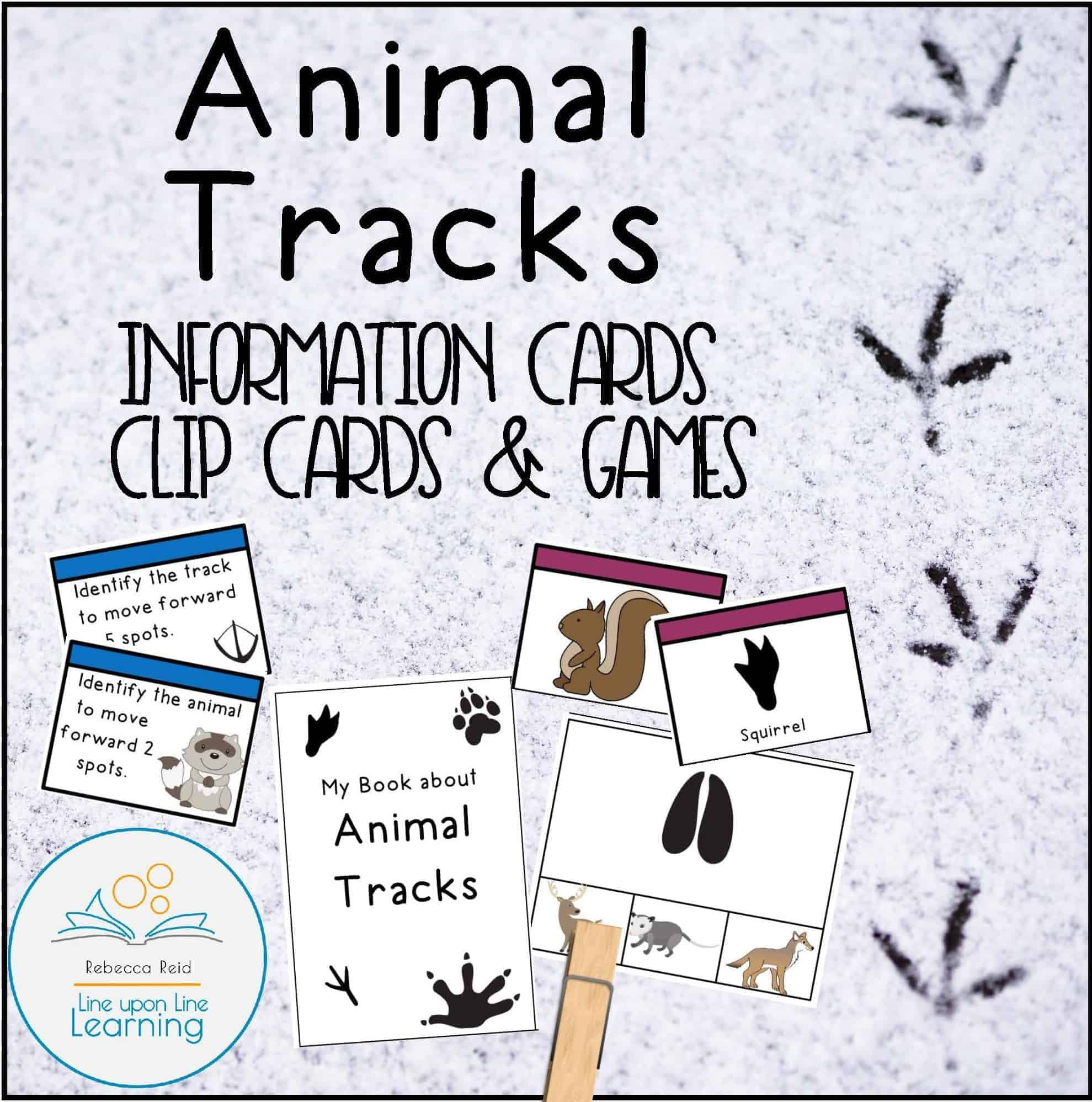Animal Tracks Information Cards Clip Cards And Games
