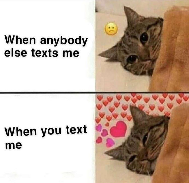 Wholesomememes Wholesome Cute Love Cutememes Bf Gf Partner