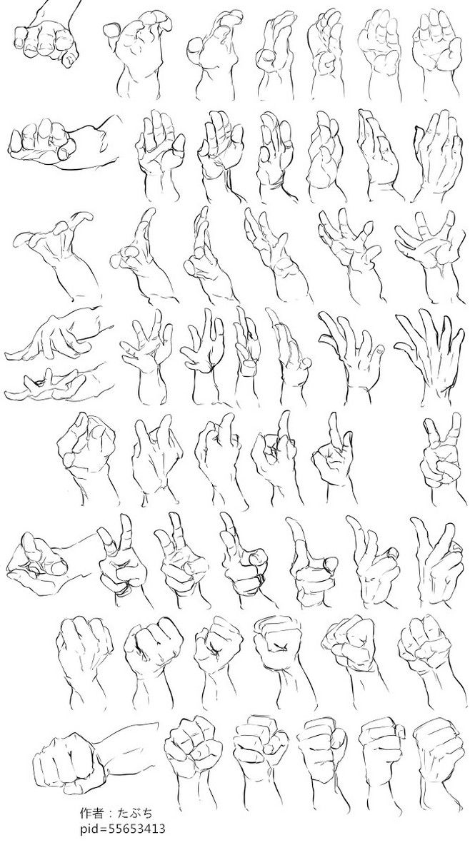 Pin by 건호 김 on 손   Pinterest   Anatomy, Draw and Drawing reference