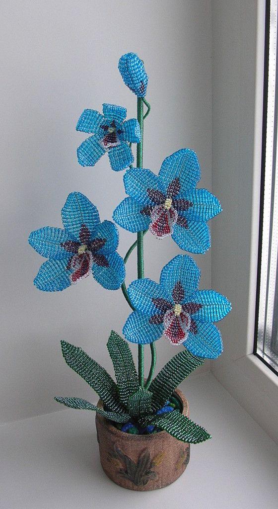 плетение орхидеи синей из бисера пошаговые фото сожалению, сегодня многие