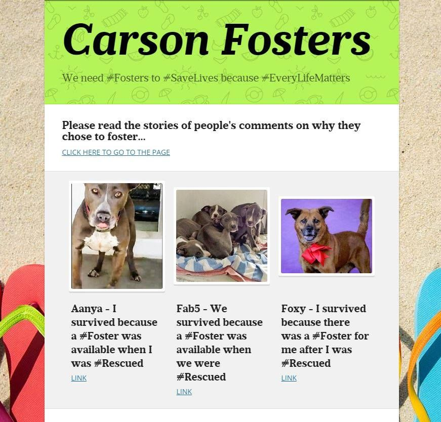 CARSON, CA ** FOSTERS** WE NEED #FOSTERS TO #SAVELIVES BECAUSE #EVERYLIFEMATTERS  SEE IT ONLINE: https://www.smore.com/x7v5f-carson-fosters  Please read the stories of people's comments on why they chose to foster... LINK: https://www.facebook.com/susiesseniordogs/photos/a.272358689587441.1073741828.272349689588341/467175133439128/?type=1&theater