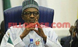 Boko Haram kill at least 14 in Christmas Day attack in Nigeria