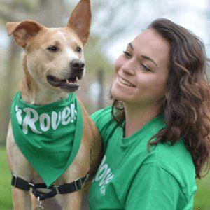 Rover Com Dog Boarding Dog Walking More Side Hustle Option