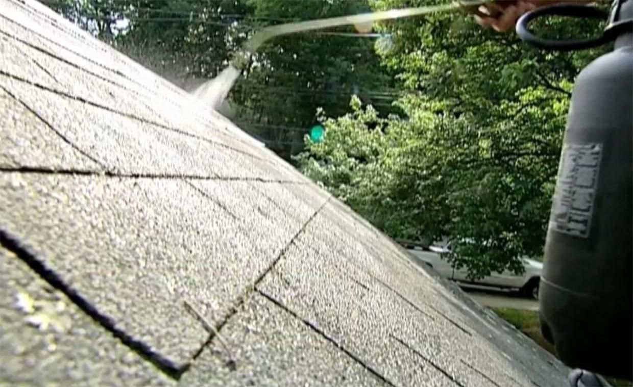 How to Remove Roof Moss Roof repair, Roofing, Roof