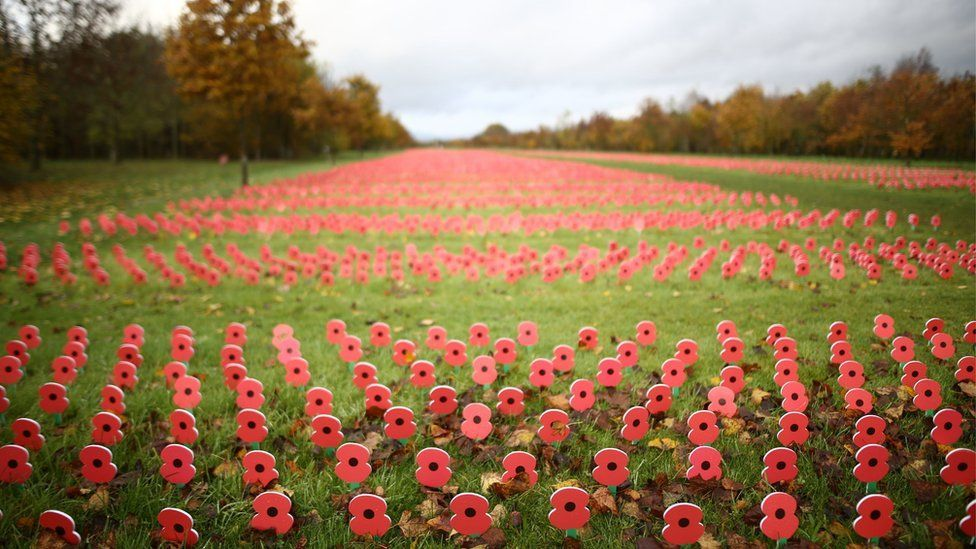 In pictures Armistice Day Armistice day, Remembrance