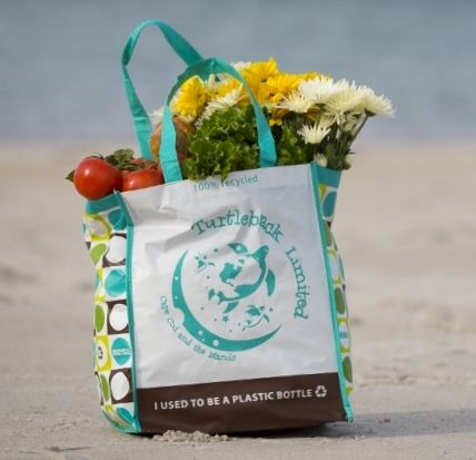 Our recycled, reusable shopper; looks kind of cool sitting on the beach and doing it's job, doesn't it? www.turtlebackltd.com