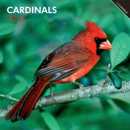 Indiana Backyard Birds   Wall Calendar: The Cardinal Is The State Bird Of  Illinois,