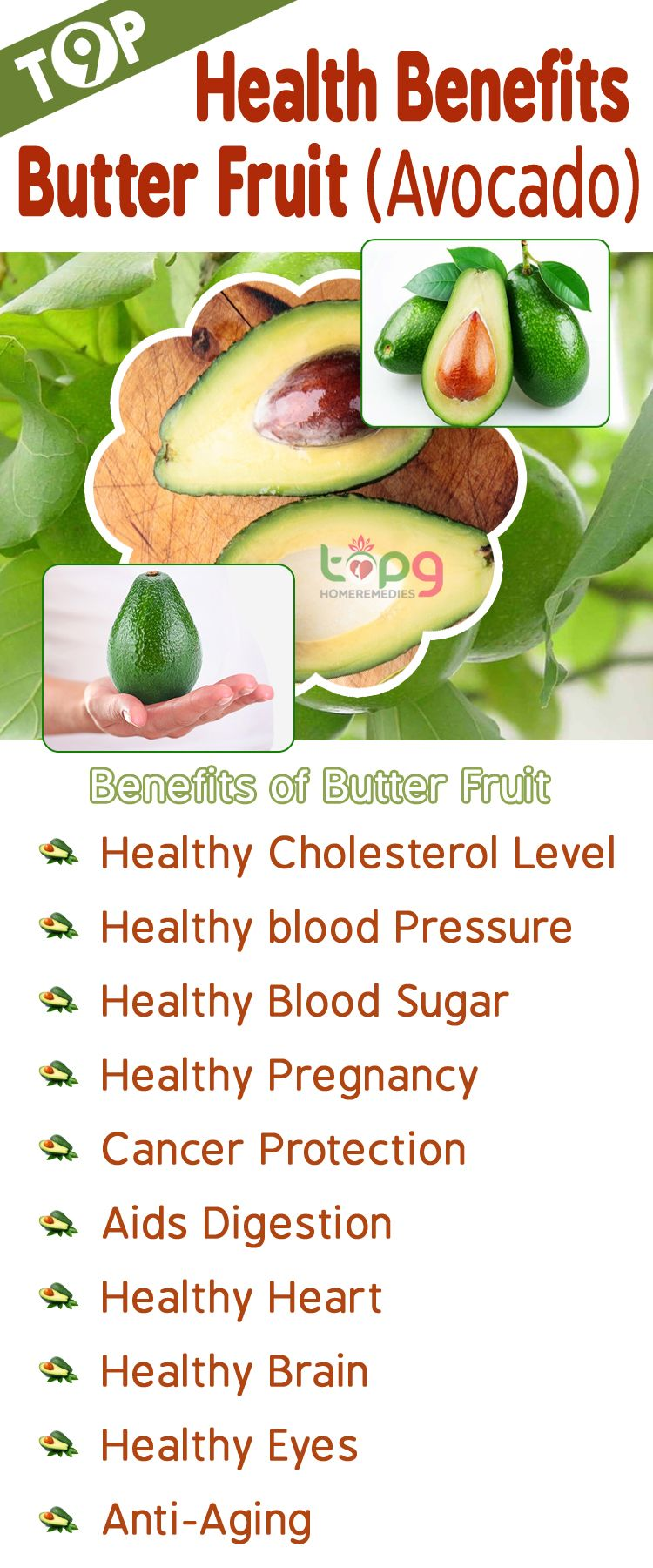 top 9 butter fruit (avocado) health benefits.. (with images