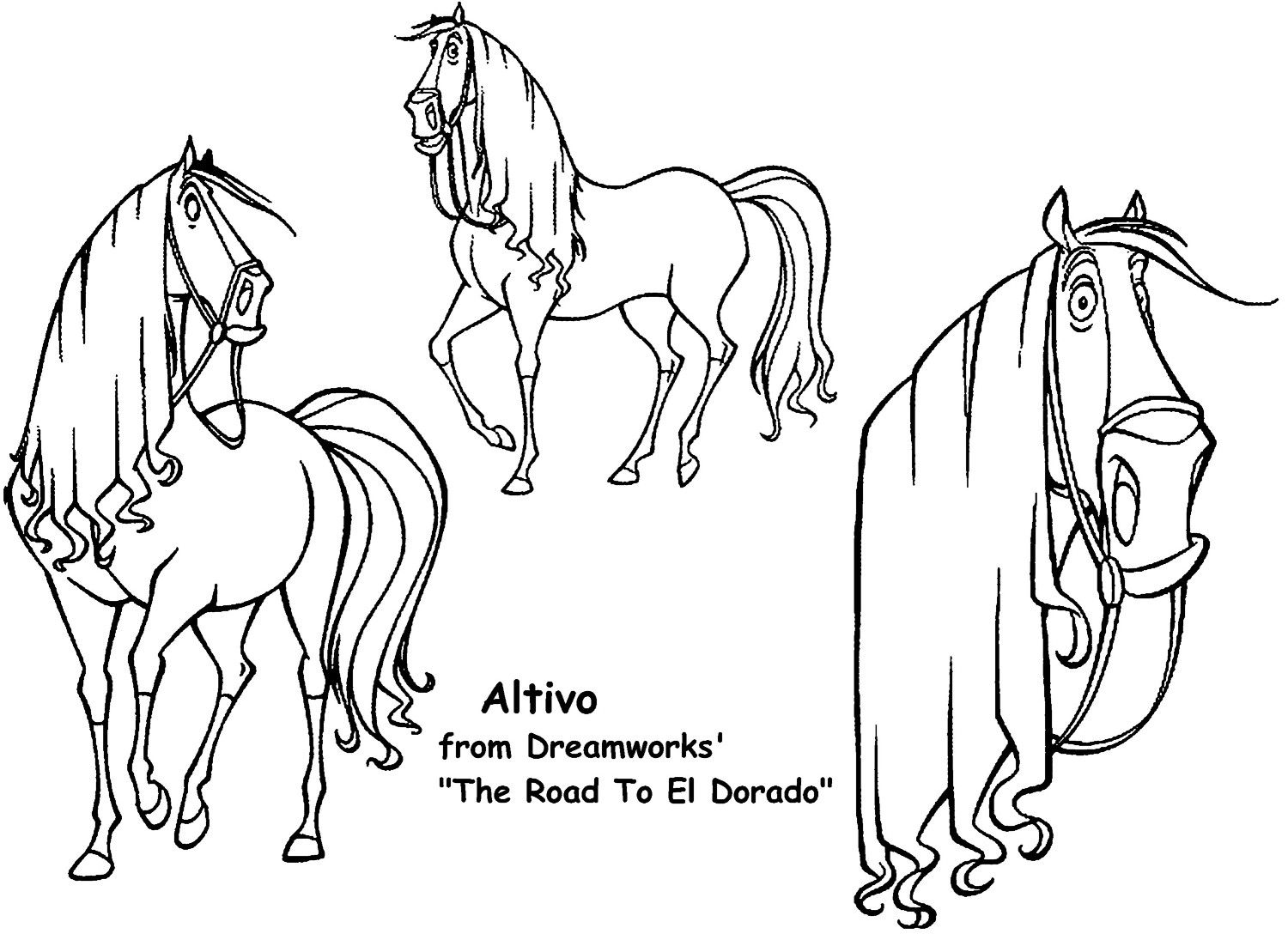 My Favorite Part Of Altivo Is That His Mane Is Straight
