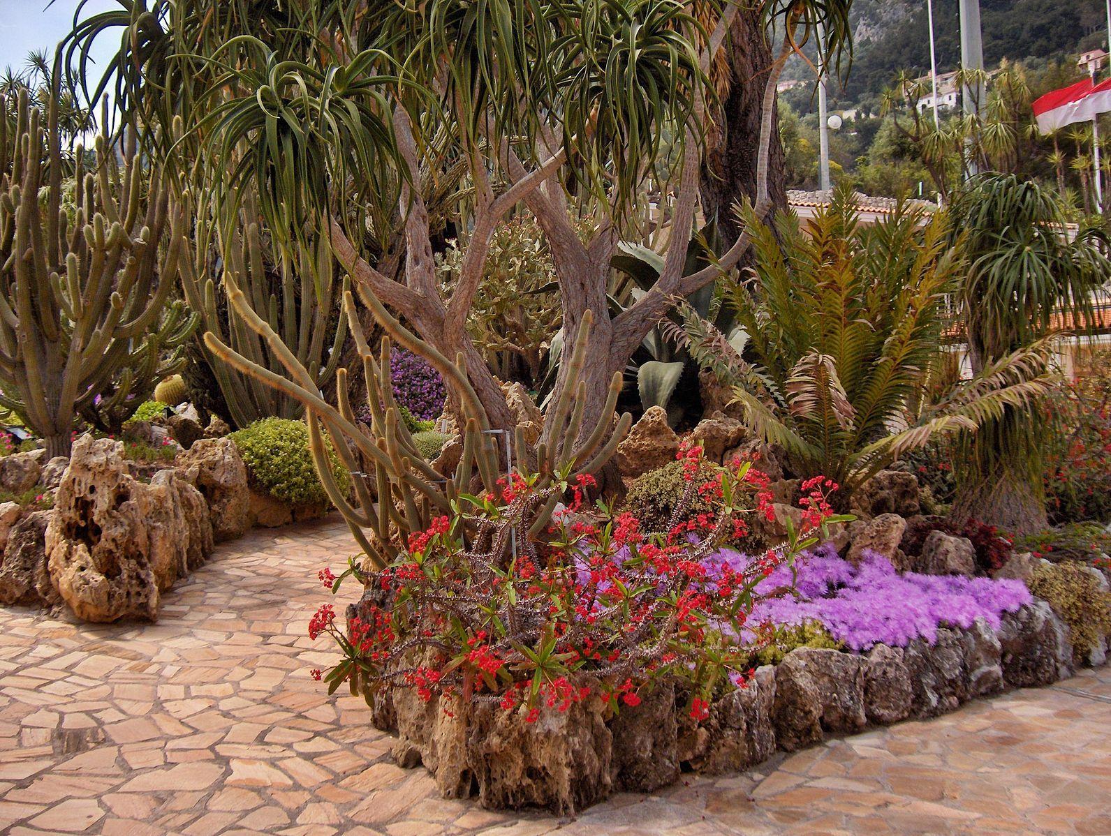 File:Monaco.Jardin exotique016.jpg | Fruits, Vegetables, Seeds ...