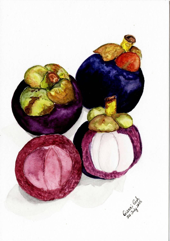 Mangosteen Original Watercolor Painting