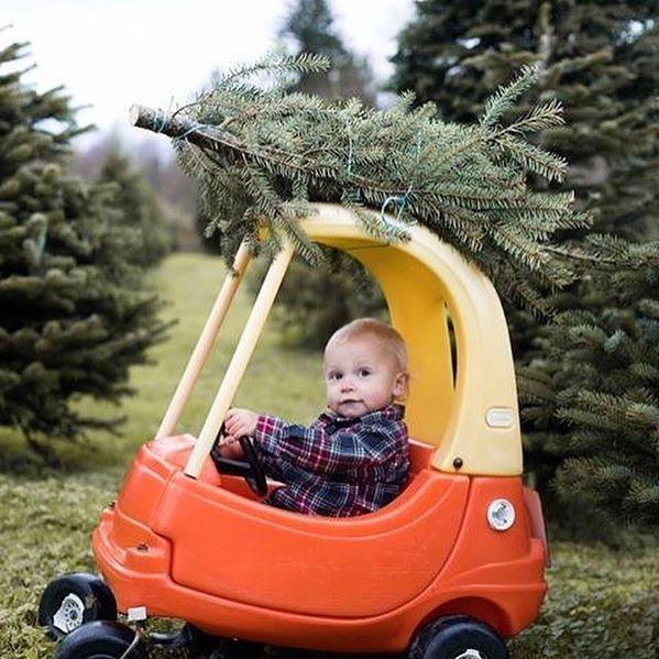 little tikes car christmas tree family photos