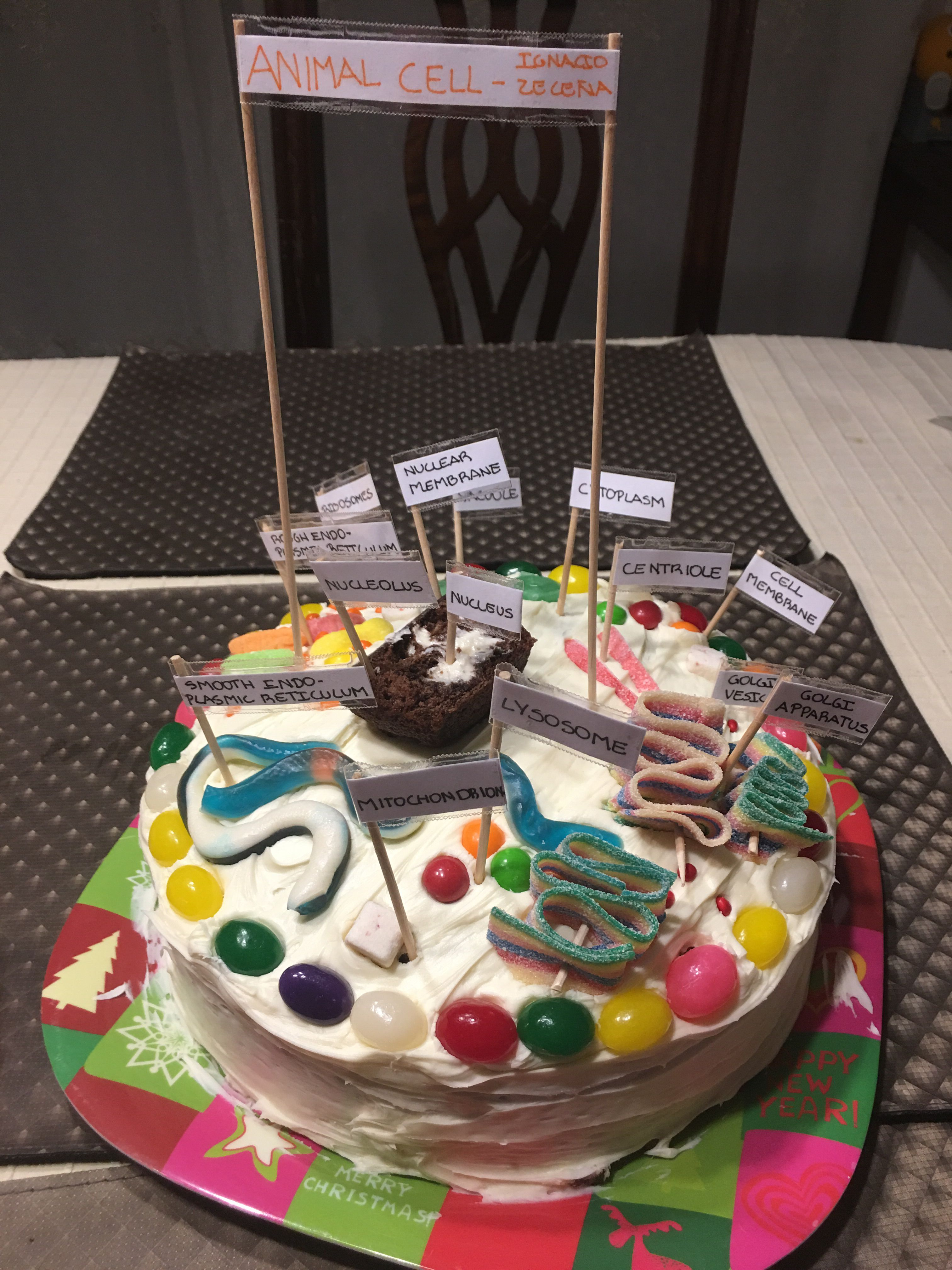 Edible cell model, to avoid waste!   Edible animal cell ...