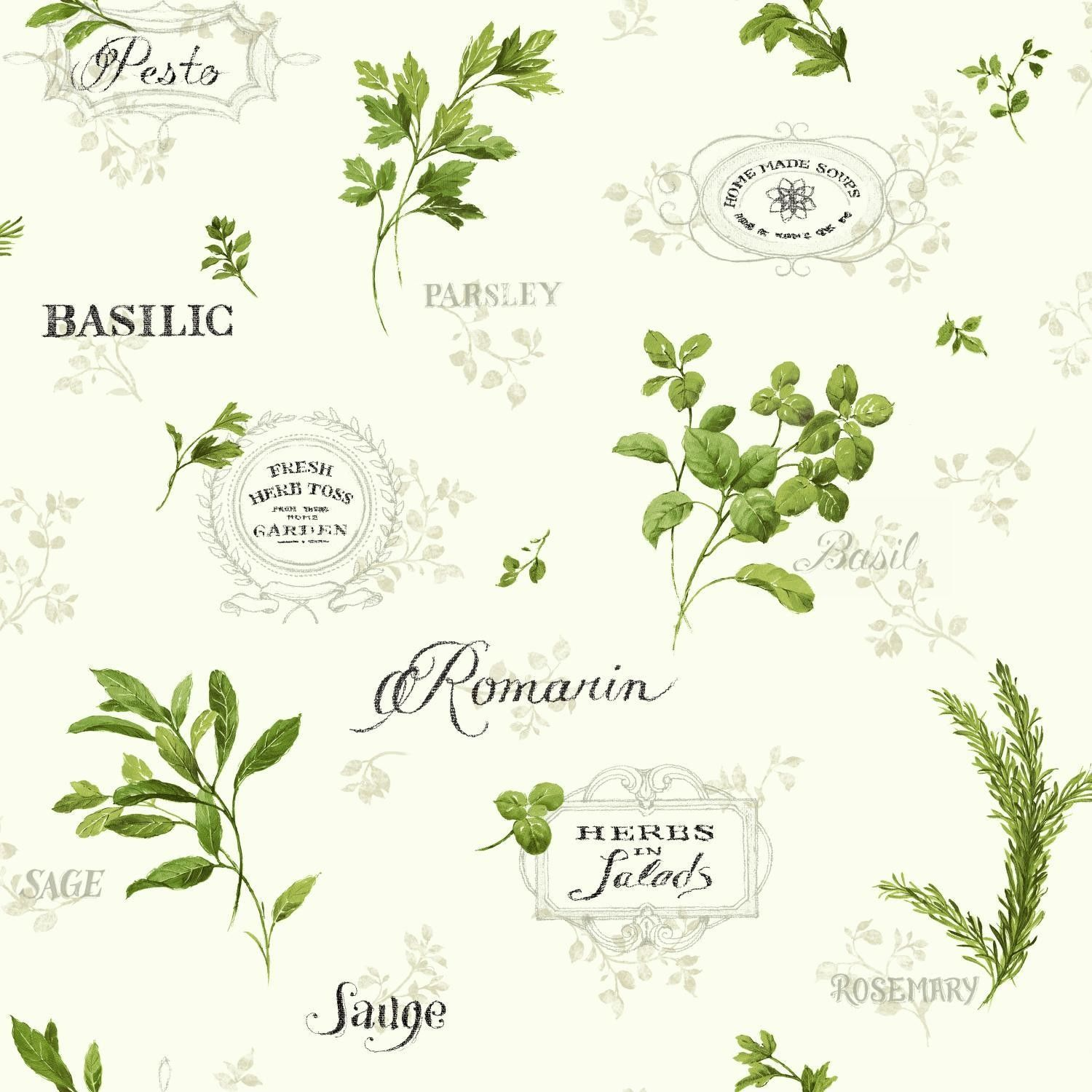 """Kitchen and Bath Aromatique 33"""" x 20.5' Floral and Botanical Smooth Wallpaper"""
