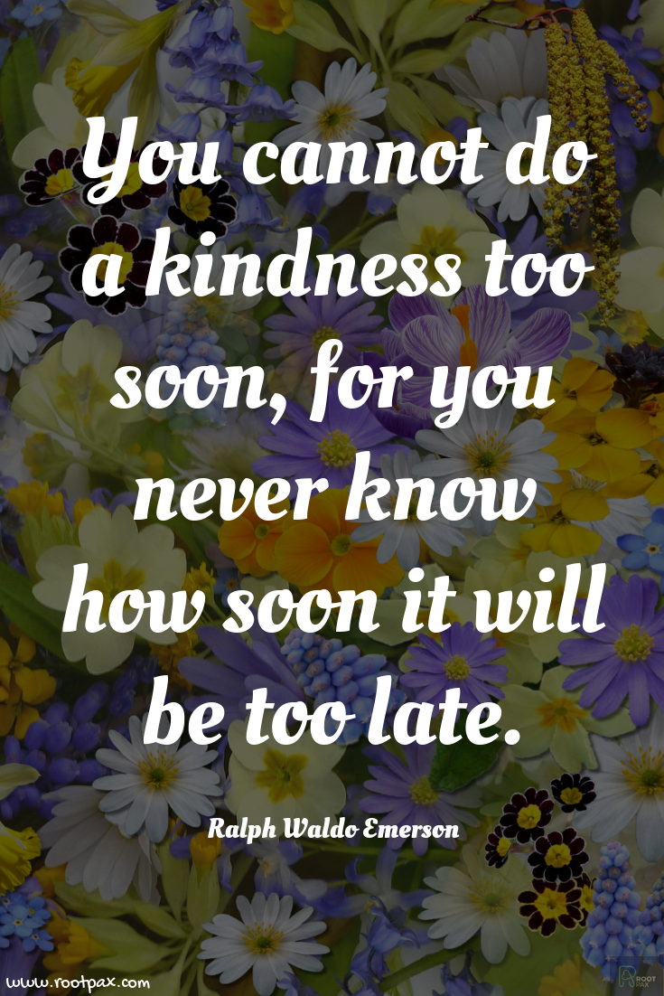 A Little Kindness Goes A Long Way Make A Difference Quotes To Live