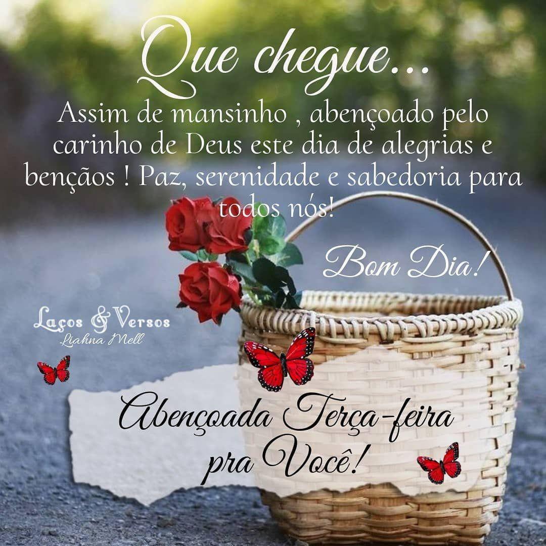 Bomdia Felizterca Carinho Deus Bencaos Alegria Paz