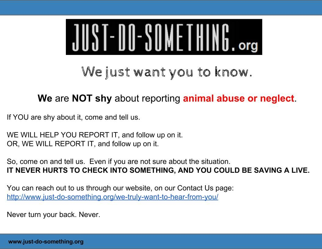 14++ How to report animal cruelty ideas in 2021