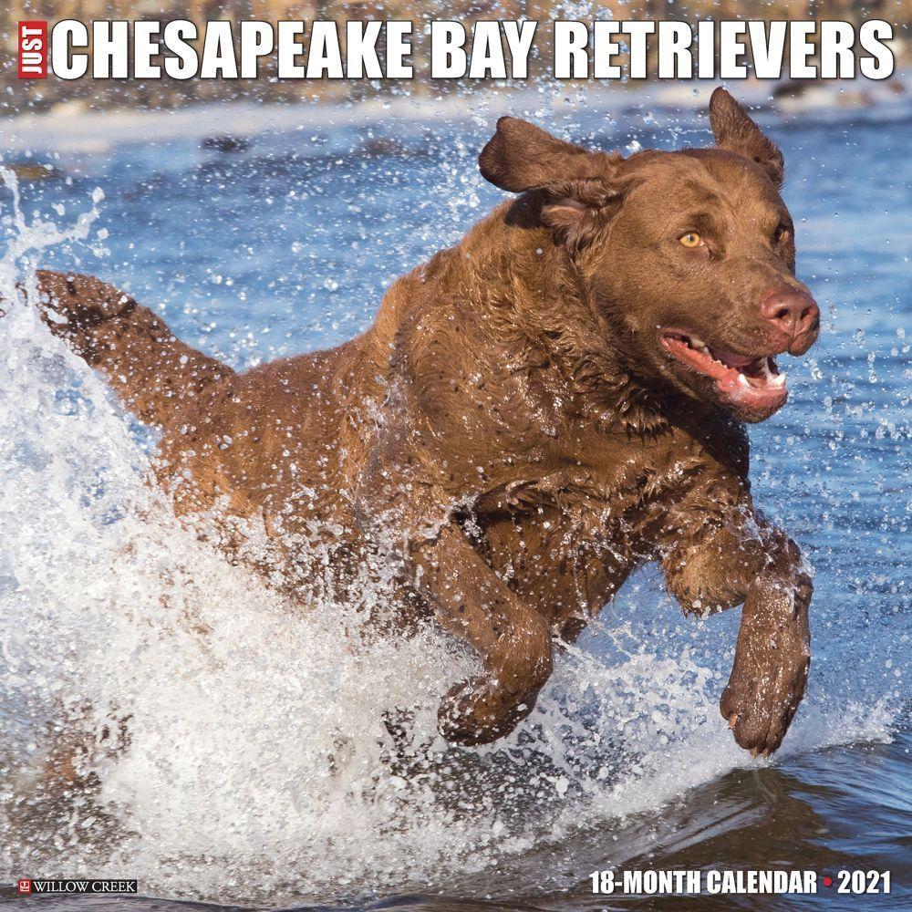 Chesapeake Bay - Wikipedia