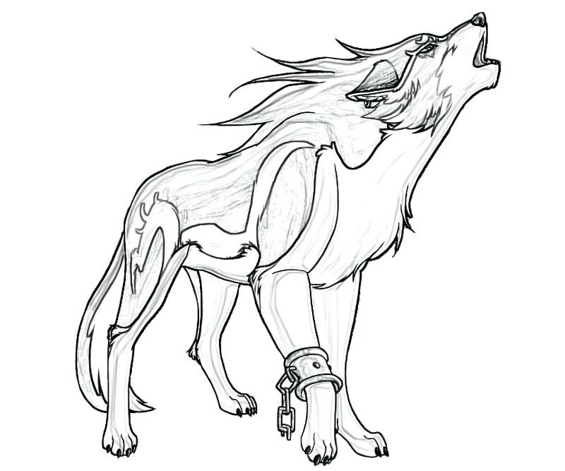 Wolf Color Pages Pics Coloring Free Printable Wolf Coloring Pages At Free Printable Wolf Coloring Pages For Kids Animal Templates Wolf Colors Wolf Drawing Easy
