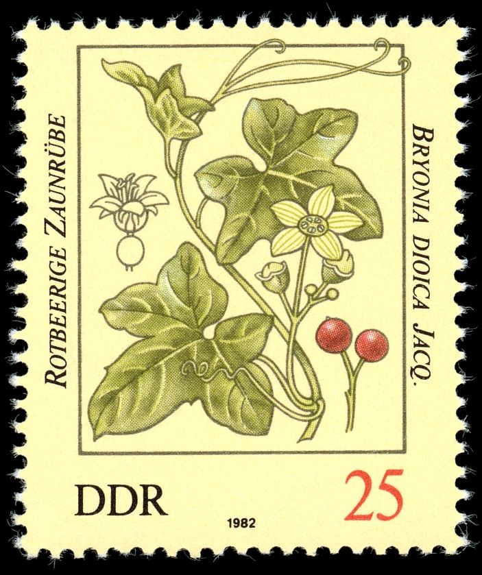 Stamps of Germany (DDR) 1982 BriefmarkenJahrgang 1982