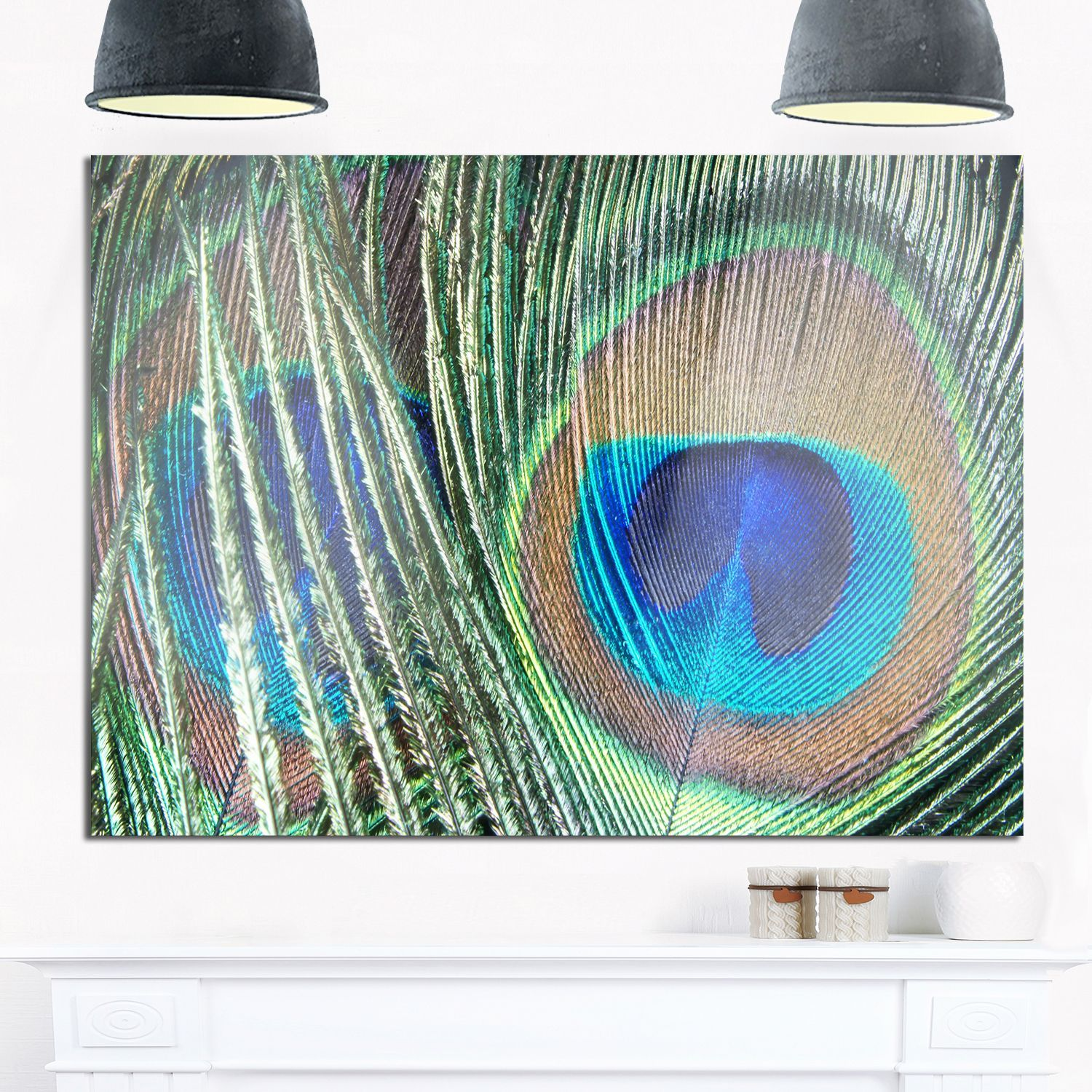 Peacock feather photography glossy metal wall art