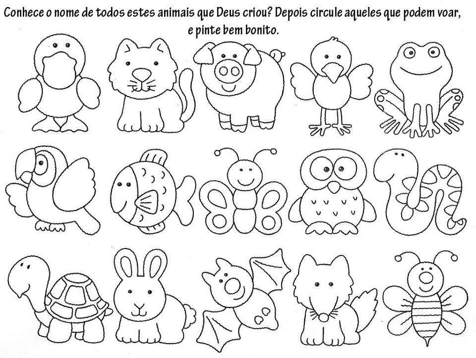 animales | Educación | Pinterest | Animales, Dibujo y Preescolar